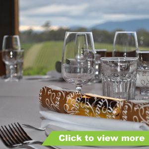 Winery Tours Gallery - Christmas Functions