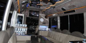 Dreamscape Tours - Night Clubs Vehicle - 15 Seat Limo Bus 02
