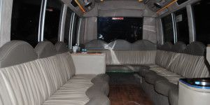 Dreamscape Tours - Night Clubs Vehicle - 15 Seat Limo Bus 03