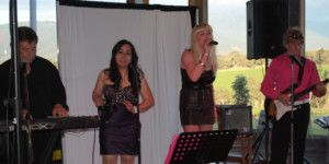 Dreamscape Tours - Winery Tours Christmas Functions 002