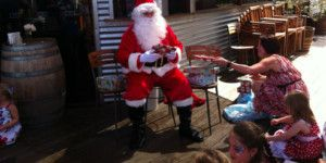 Dreamscape Tours - Winery Tours Christmas Functions 025