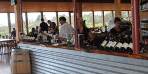 Dreamscape Tours - Winery Tours Christmas Functions 027