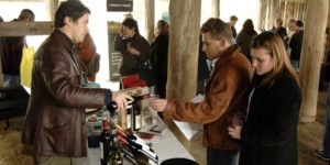 Dreamscape Tours - Winery Tours 018