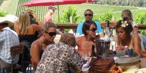 Dreamscape Tours - Winery Tours 030