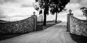 winerytours-general_80