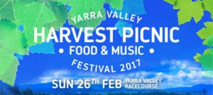 festivals-harvest-picnic-yarra-valley-01a