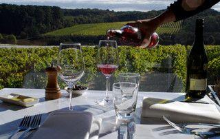 wine tours melbourne