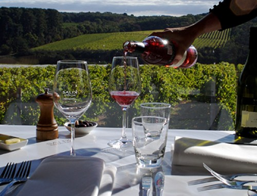 Wine Tours Around Melbourne