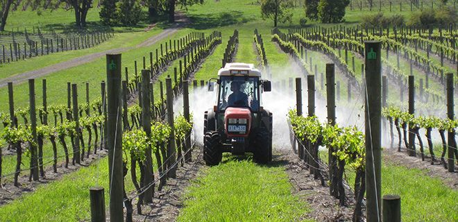 private winery tour melbourne